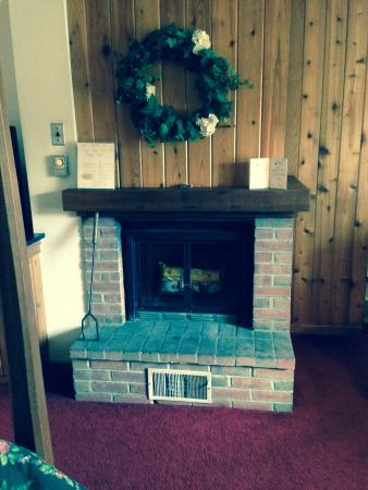 Crescent Lodge & Country Inn : Fireplace