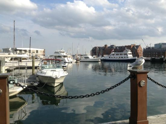 Ultimate Guide to the Boston Harborwalk - Mommy Nearest