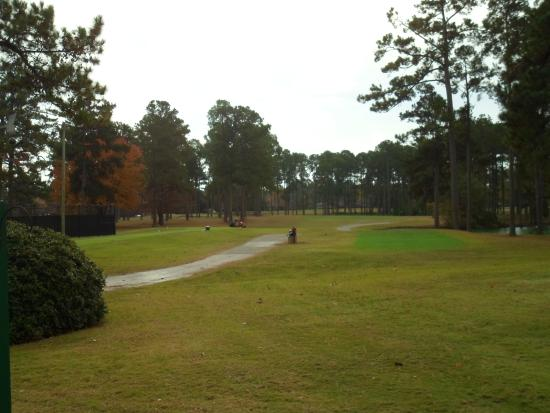 Santee Cooper Country Club : Santee Cooper and its pines