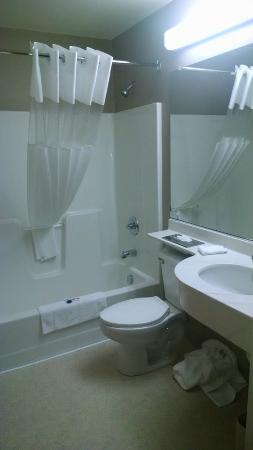 Microtel Inn & Suites by Wyndham Hazelton/Bruceton Mills: Guest Room Bathroom