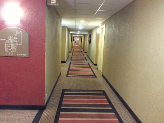 Holiday Inn Strongsville: Hallway at the Strongsville Holiday Inn
