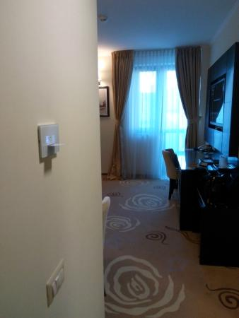 Hotel Coroana De Aur : room