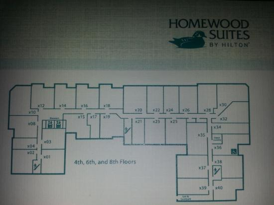 Homewood Suites Floor Plans 120 Homewood Ave Suite 3101 The Verve Condo Virtual Tour Floor