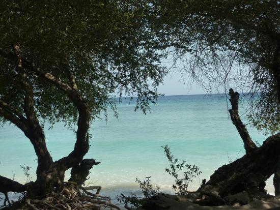 Alam Gili: Vue sur plage