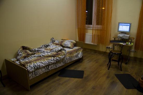 Tiger Hostel : моя полосатая комната