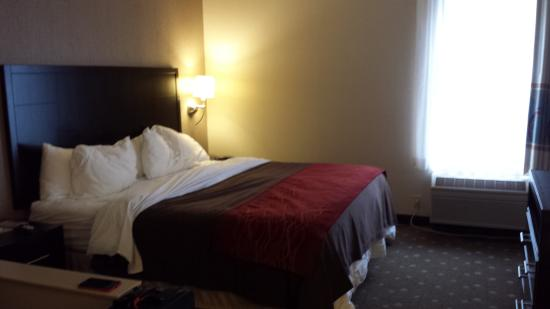 Comfort Inn  - Pittsburgh / Steubenville Pike: Spacious bed area