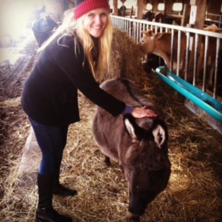 Taylor Farm: .