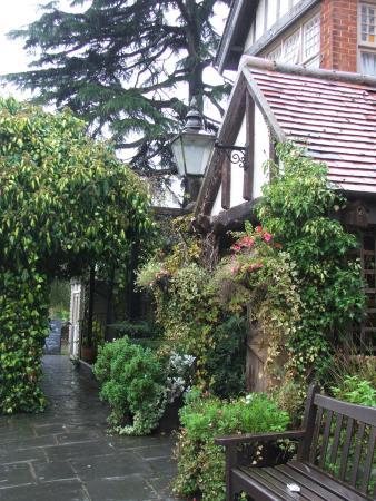 Thames Court: Garden terrace