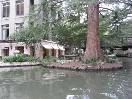 Riverwalk- wedding island - Picture of River Walk, San Antonio ...