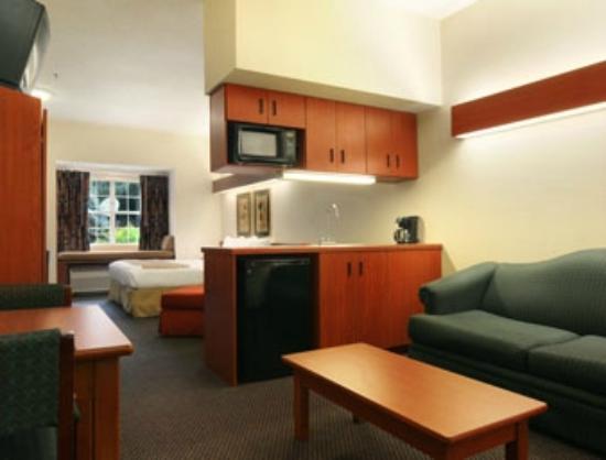 Microtel Inn & Suites by Wyndham Atlanta/Perimeter Center : Single Queen Suite