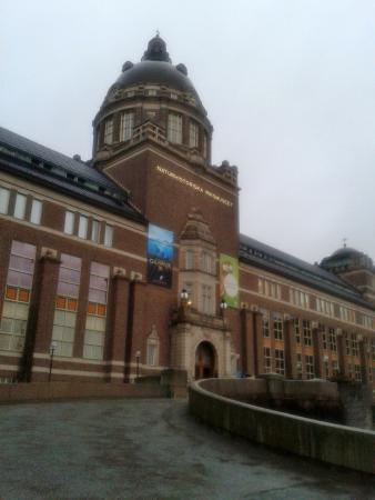 Museo Sueco de Historia Natural: Naturhistoriska