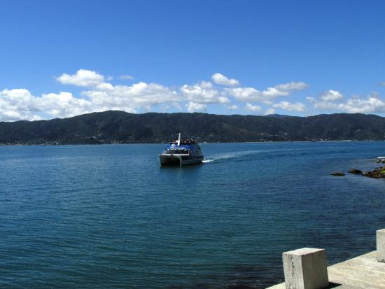 Ferry arriving to collect us from Somes Island onto Days Bay.