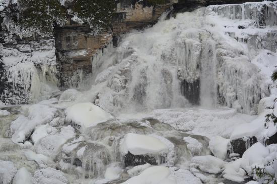 The Falls Inn & Spa : Inglis Falls