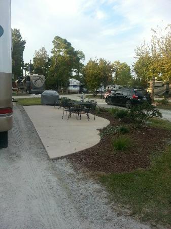 Wilmington KOA: Rear of our pull-thru site
