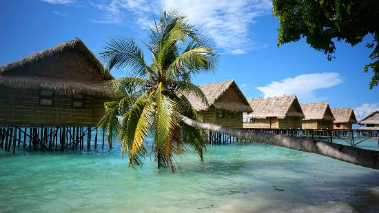 Papua Paradise Eco Resort: Our over-water bungalows...