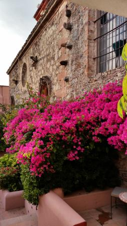 Casa Rosada Hotel: Exterior Pic
