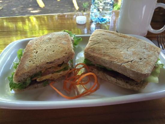Vida Hermosa Bar y Restaurante: Delicious Breakfast Sandwich!