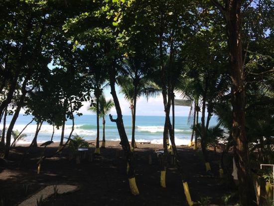 Vida Hermosa Bar y Restaurante: The View from the Bar Seats