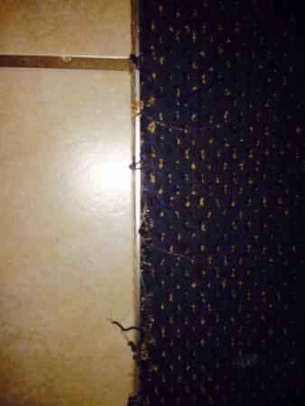 Wingate by Wyndham Bridgeport: Carpet leading to bathroom