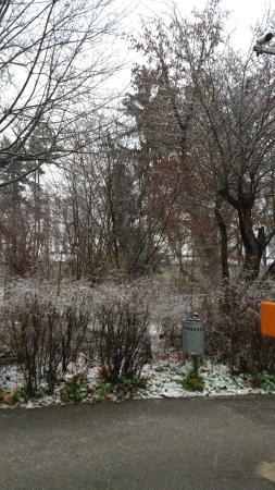 Parkhotel Krems: Park in Krems