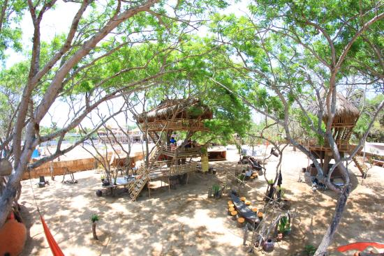 Treehouse Picture Of The Pirates Bay Bali Bali
