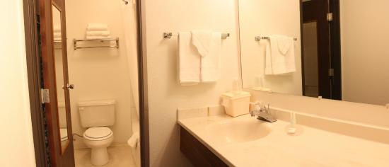 FairBridge Inn & Suites: In Room Bathroom