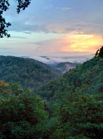 Kali Adventure camp : Gorgeous view of Anshi Tiger Reserve.