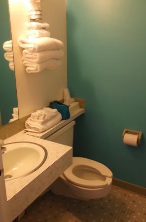 Charlroy Motel: Salle de bain chambre 201