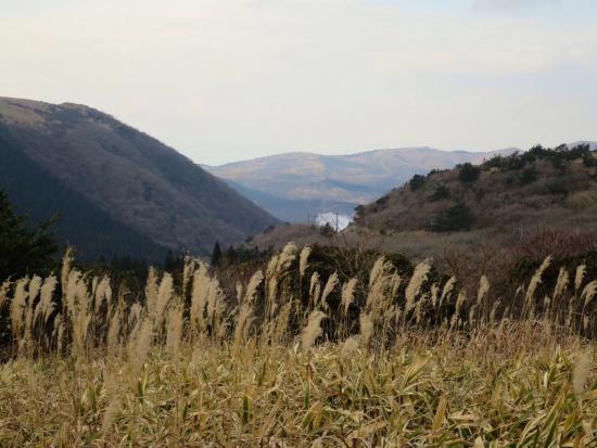 Kuju Highland : 広大な景色