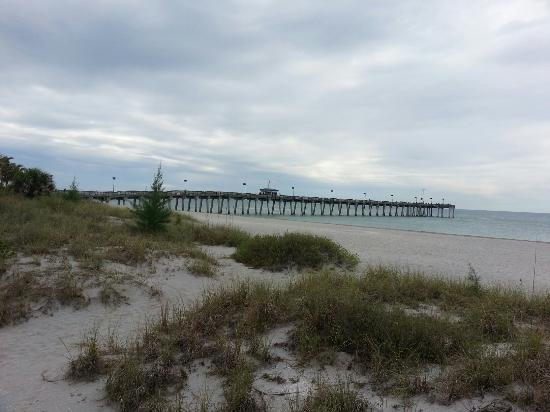Venice Fishing Pier : Just the fishing pier