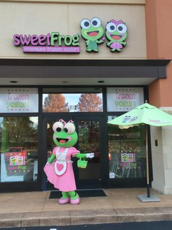 Sweet Frog Yogurt
