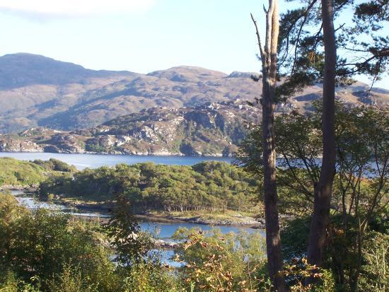 View from Glenborrodale Castle