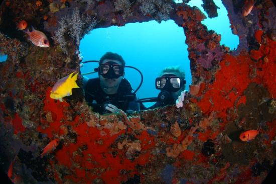 Ocean Explorers Dive Center: OEC
