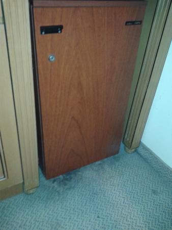 America Plaza Hotel : Carpete podre em torno do frigobar