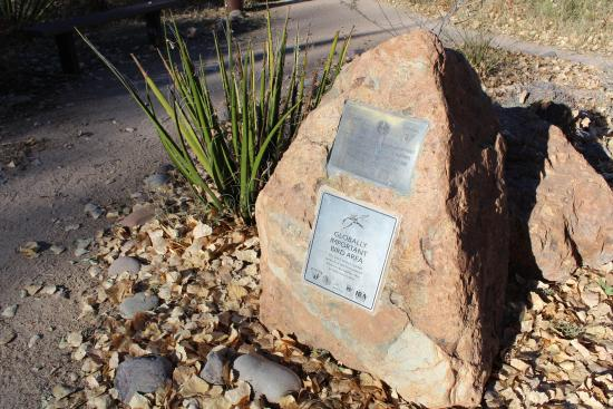 San Pedro Riparian National Conservation Area: At the San Pedro House