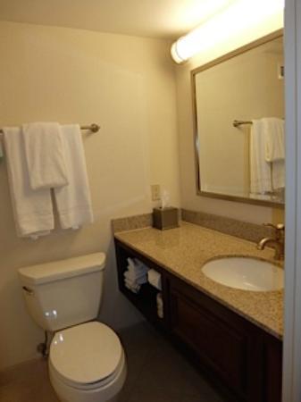 Courtyard Boston Logan Airport: Bathroom