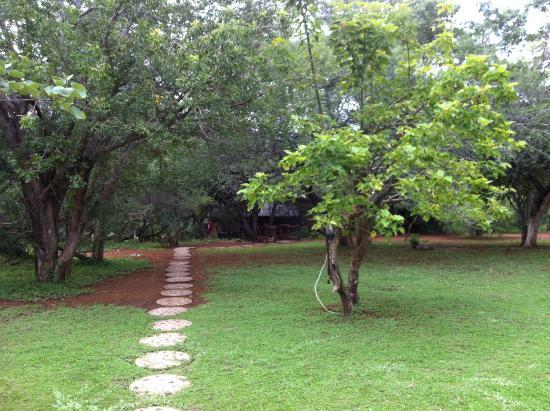 Baluleni Safari Lodge : Walkway to one of the chalets