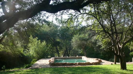 Baluleni Safari Lodge : Gardens