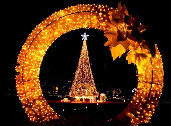 Lookout Point Lakeside Inn: Holiday Lights at the Garvan Gardens