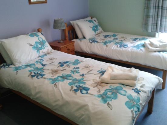 Newstead Bed & Breakfast: Twin Room
