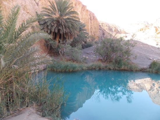 Sahara Desert : а это озеро в горном оазисе