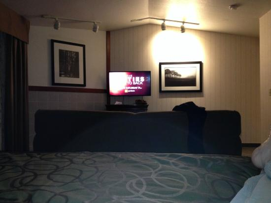 Best Western Plus Forest Park Inn: TV
