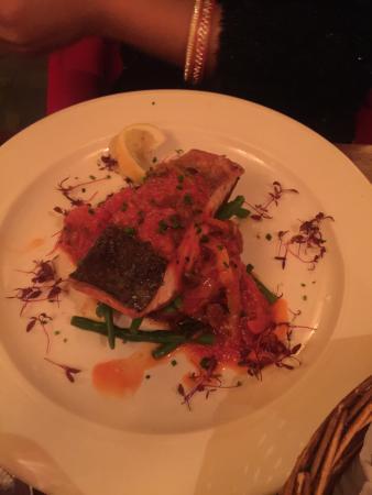 Salmon main