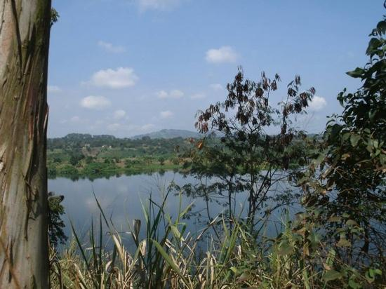 Nile River Camp: the vie over the nile