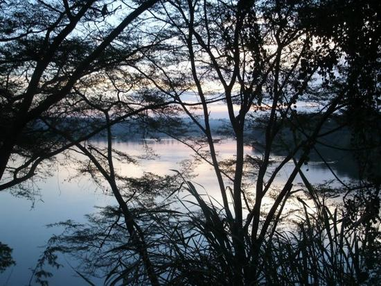 Nile River Camp: the view over the nile