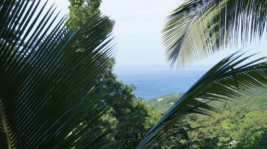 Villa Rose Caraibes : vue de la kaz en l'air