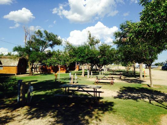 Amarillo Koa Campground Reviews Tx Tripadvisor