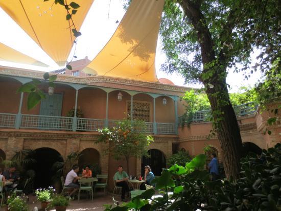 Dans le jardin picture of jardin majorelle marrakech for Cafe le jardin marrakech