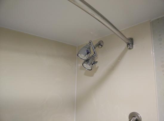 SpringHill Suites Orlando Convention Center/International Drive Area : The Ultimate Shower Head