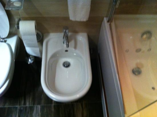 Hotel Oberosler: Bidet